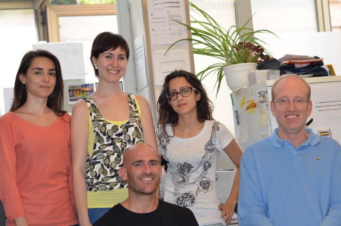 2015 il gruppo dello Spinal Lab. di Udine